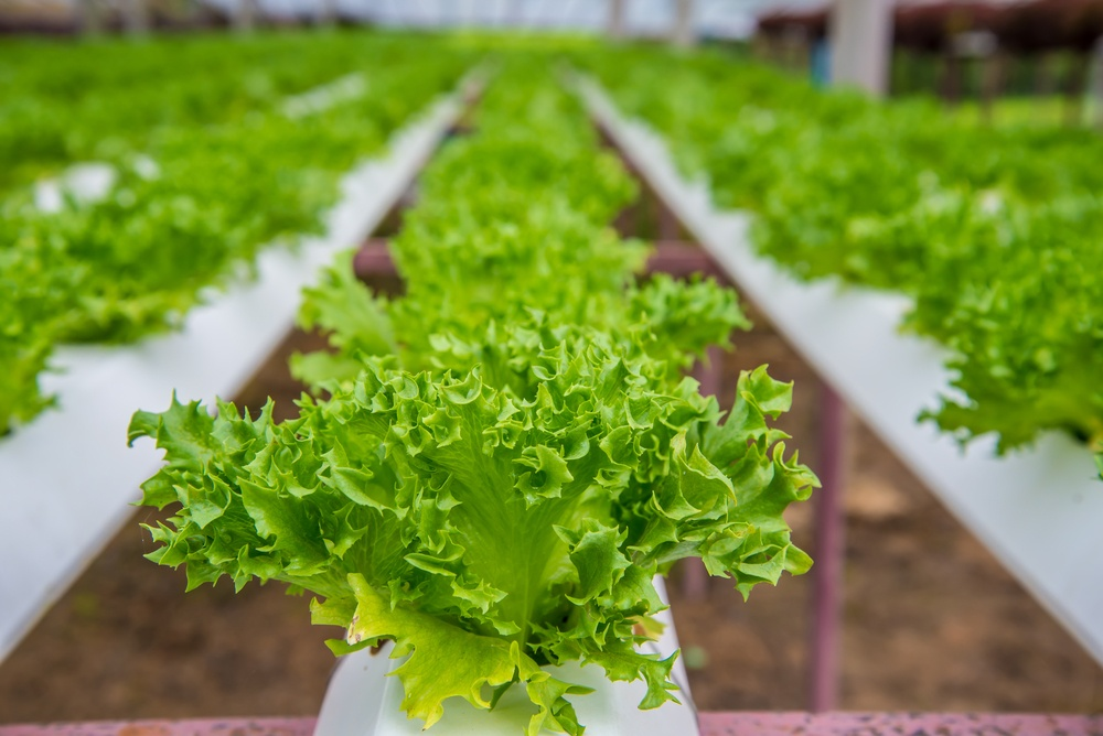 The World's First Fully Robotic Farm Opens In 2017