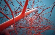 China Makes World's 1st 3D Blood Vessel Bio-Printer